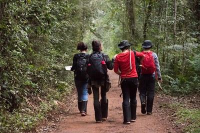 Tornou-se parte da missão de muitos pesquisadores, desenvolver investigações sobre a riqueza da flora e da fauna da região