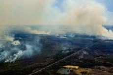 Focos de incêndio no Pantanal - crédito da foto: Mayke Toscano/Secom MT